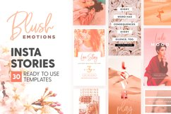 Instagram Stories - Blush Emotions Product Image 1