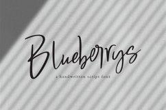 Blueberrys Signatures Product Image 1