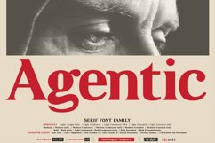 Agentic - Serif font family Product Image 2