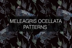 Meleagris ocellata patterns Product Image 2