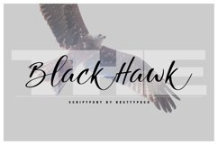 The Black Hawk Product Image 1