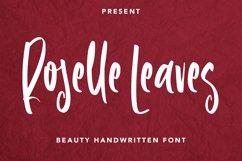 Roselle Leaves - Handwritten Font Product Image 1