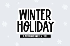 Web Font Winter Holiday - A Fun Handwritten Font Product Image 1
