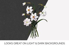 Daffodil Clipart White Flowers Vintage Product Image 2