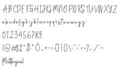 Anatonym - Script Font Product Image 6