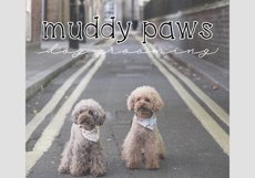Cats and Dogs - A Cute Handwritten Font Product Image 4