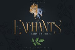 Enchants - Magical font - Extras Product Image 1