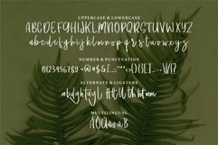 Web Font Delilla - A Fun Script Font Product Image 6