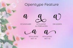 Nattasha   A Calligraphy Font Product Image 4