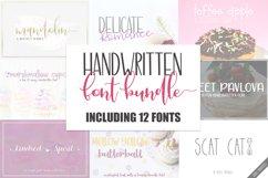Handwritten Font Bundle - 12 Fonts Product Image 1