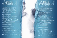 Attitude Product Image 3