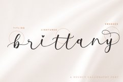 Milda A Bouncy Calligraphy Font Product Image 6
