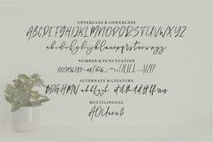 Web Font Bon Brott - A Handwritten Script Font Product Image 4