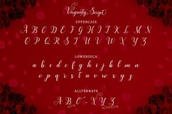 Web Font Virginity Script Product Image 6