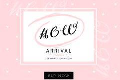 Efeymen Luxury Signature Font Product Image 3