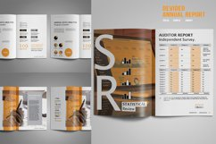 Devided Annual Report Template Product Image 5