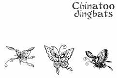Chinatoo Product Image 3