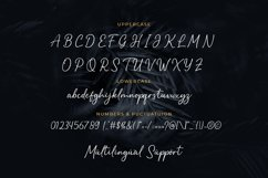 Balista - A Signature Typeface Product Image 4