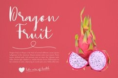 Web Font Dragonfly Font Product Image 5