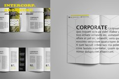 Intercorp Brochure Template Product Image 5