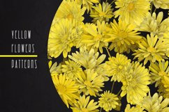 PATTERNS with YELLOW FLOWERS Product Image 1
