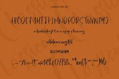 Classical - Signature Script Font Product Image 4