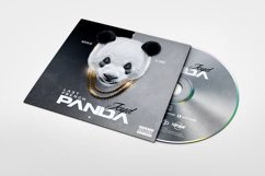 Panda   Conceptual Cover Template Product Image 2