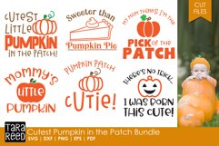 Cutest Pumpkin in the Patch Bundle Product Image 1