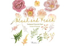 Watercolor Clipart Bundle Blush Pink and Peach Peony Product Image 4