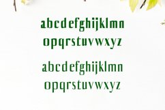 Axell Serif Font Family Product Image 3