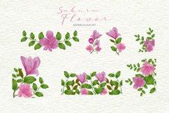 Sakura Flower Watercolour Product Image 3
