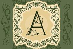 Leafy Monogram Font & Alphabet Product Image 5