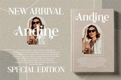 Andine - Beautiful Serif Font Product Image 16