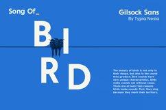 Gilsock Product Image 13
