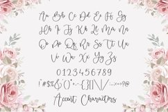 Misty Cloud Stylist Modern Calligraphy Font Product Image 6