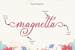 Angelica Script Product Image 10