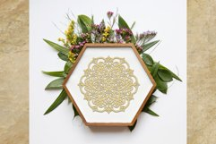 Mandala SVG | Flower Cut File Product Image 2