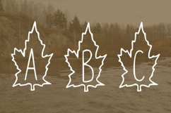 Autumn leaves font Product Image 4
