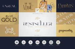 Bestseller Font Collection Vol.02 Product Image 1