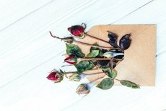 Rose buds on the background of old boards Product Image 6