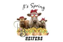 It's Spring Heifers PNG Product Image 1
