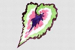 Nautilus-leaf begonia Watercolor png Product Image 3