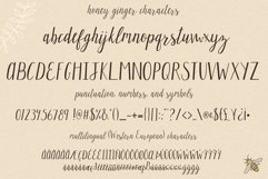 The Whimsical Handwritten Font Bundle Product Image 6