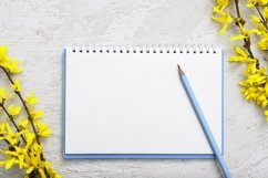 Spring blank sheet with pen and flowers template, mock up Product Image 1