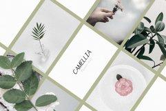 Camaly   san serif Product Image 2