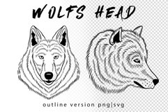 Wolf in roses set 100 hand-drawn Product Image 3