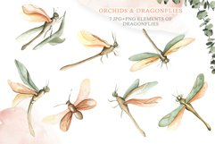 Watercolor Set Orchids and Dragonflies Product Image 3