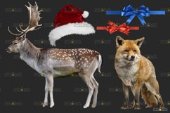 Christmas overlay & Snow overlay, Photoshop overlay Product Image 4