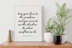 Sunfloweria Product Image 5