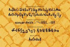 Web Font Matlod - A Stylish Script Brush Font Product Image 6
